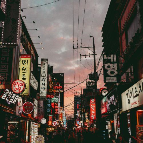 Evolve | North Korean Defectors