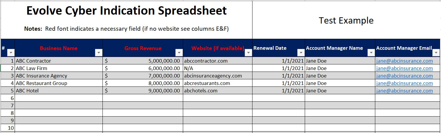 Cyber Insurance Excel Document